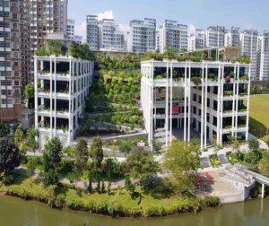 piermont-grand-ec-punggol-oasis-terraces-neighbourhood-centre